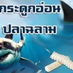 กระดูกอ่อนปลาฉลาม ดีต่อกระดูกและข้ออย่างไร?