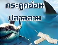 กระดูกอ่อนปลาฉลามดีต่อกระดูกและข้อต่อ