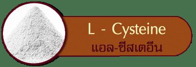 แอลซีสเทอีน l cysteine