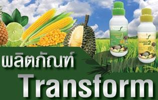 ทรานส์ฟอร์มเพื่อบำรุงพืชและเพิ่มผลผลิตการเกษตร