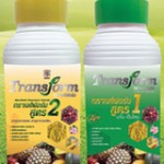 อาหารเสริมพืช ทรานส์ฟอร์ม Transform สูตร 1-2