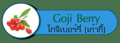 Goji Berry Extract โกจิเบอร์รี่ หรือ เก๋ากี้