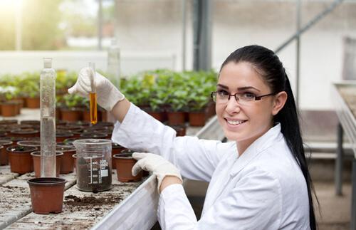 ปุ๋ยเคมีคือธาตุอาหารพืช ไม่ใช่ยาฆ่าแมลง