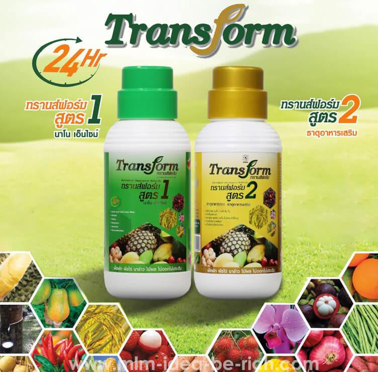 อาหารเสริมพืชปุ๋ยน้ำทรานสฟอร์ม Transform สูตร 1-2