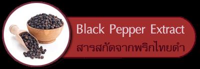 สารสกัดจากพริกไทยดำ Black Pepper Extract