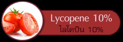 ไลโคปีน 10% Lycopene 10%