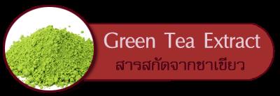 สารสกัดจากชาเขียว Green tea extract