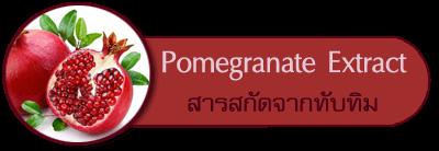 สารสกัดจากทับทิม Pomegranate Extract