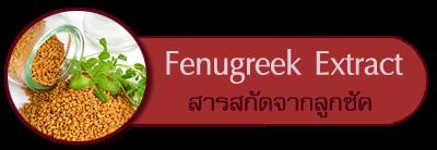 สารสกัดจากลูกซัค fenugreek extract
