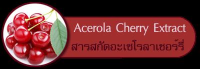 สารสกัดจากอะเซโรลาเชอร์รี่ Acerola Cherry Extract