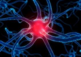 สารสื่อประสาท บำรุงสมองและระบบประสาท เสริมความจำ ช่วยโรคความจำเสื่อม อัลไซเมอร์ โรคซึมเศร้า