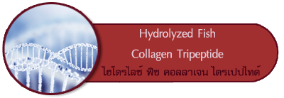 hydrolyzed fish collagen tripeptide