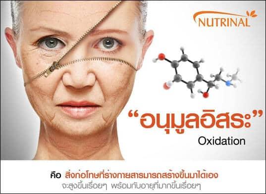 anti aging เพื่อการชะลอวัย ลดความชรา