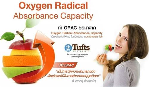 ความสามารถในการต้านสารอนุมูลอิสระของพืชผักผลไม้ ORAC
