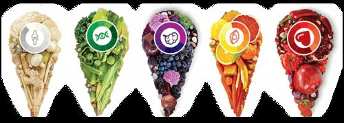 ไฟโตนิวเทรียนท์ phytonutrient สารสำคัญในผักผลไม้