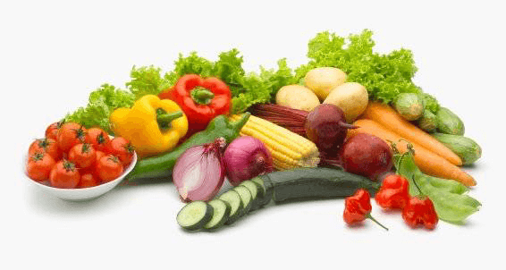 เอนไซม์ enzyme เป็นสิ่งสำคัญต่อร่างกายเป็นอย่างมาก