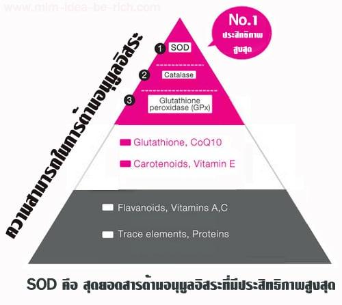 sod คือ สุดยอดสารต้านอนุมูลอิสระที่มีประสิทธิภาพสูงสุด
