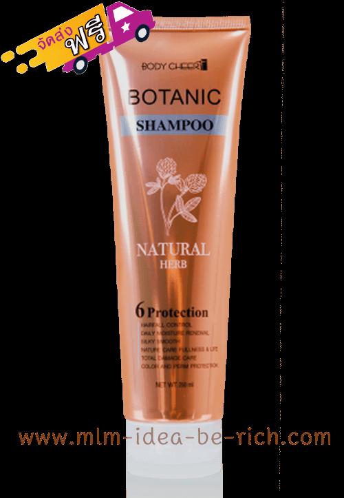 แชมพูโบทานิค Botanic Natural Herb Shampoo บริษัทซัคเซสมอร์