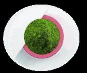 โปรตีนจากพืช 4 ชนิดของอาหารเสริมโปรตีนไฮโปร
