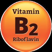วิตามินบี 2 (Riboflavin)