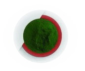 โปรตีนจากสาหร่ายสีเขียวแกมน้ำเงิน
