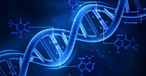 รหัสพันธุกรรมในยีน