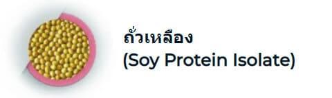ถั่วเหลือง (Soy Protein Isolate)