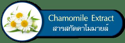 สารสกัดคาโมมายล์ chamomile extract