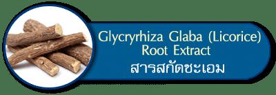 Glycryrhiza Glabra Root Extract
