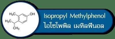 ไอโซโพพิลเมทิลฟีนอล isopropyl methylphenol