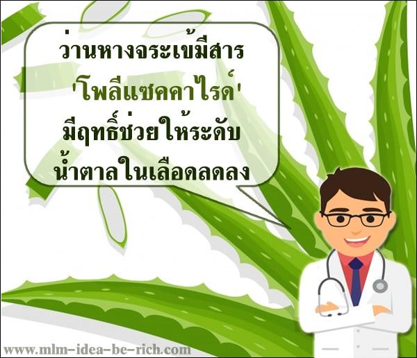ว่านหางจระเข้เป็นอีกหนึ่งวิธีที่ดีในการรักษาโรคเบาหวาน