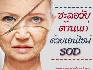เอนไซม์ SOD ชะลอวัย ต้านความแก่ สุขภาพแข็งแรง