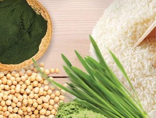 โปรตีนจากพืชดีต่อสุขภาพ ช่วยสร้างฮอร์โมนDHEA