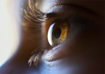 สายตาเสื่อมแก้ได้ด้วยลูทีนและวิตามินเอ