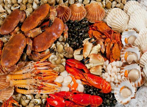 เปลือกหอย เปลือกกํุ้ง กระดองปู มีสารกลูโคซามีน ช่วยลดการอักเสบและอาการปวดข้อ