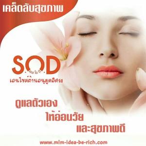 ดูแลสุขภาพให้อายุยืน อ่อนวัย ด้วยเอนไซม์ต้านอนุมูลอิสระ SOD