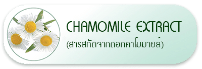 Chamomile Extract (สารสกัดจากดอกคาโมมายล์)
