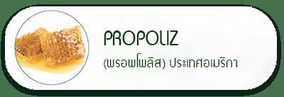 propoliz พรอพโพลิส ประเทศอเมริกา