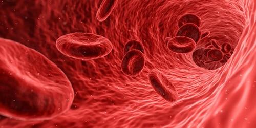 คอเลสเตอรอลทำให้หลอดเลือดตีบตัน