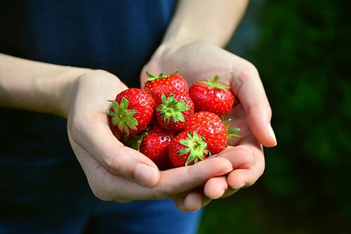 เพื่อลดไขมันในเลือด ควรเลือกทานผลไม้เป็นประจำ