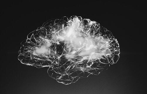 ระบบประสาทและสมอง