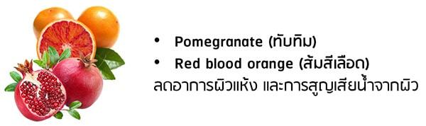 ทับทิม Pomegranate