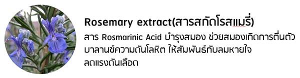 สารสกัดโรสแมรี่ Rosemary Extract
