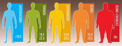 การวัดค่ามวลไขมันภายในร่างกาย