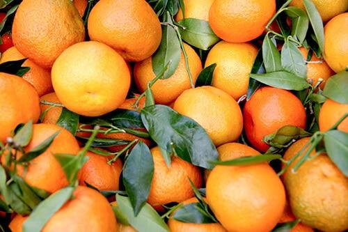 Citrus Aurantium (สารสกัดจากส้ม)