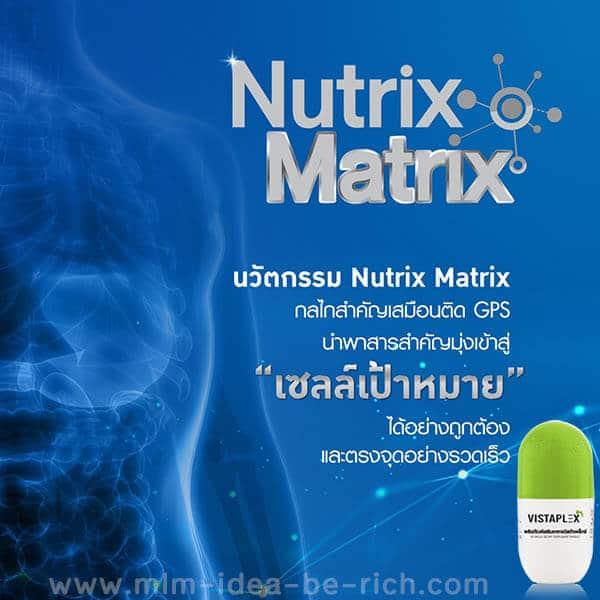 วิตามินรวม Vistaplex ได้ใช้นวัตกรรม Nutrix Matrix ทำให้ร่างกายได้วิตามินและแร่ธาตุอย่างรวดเร็ว