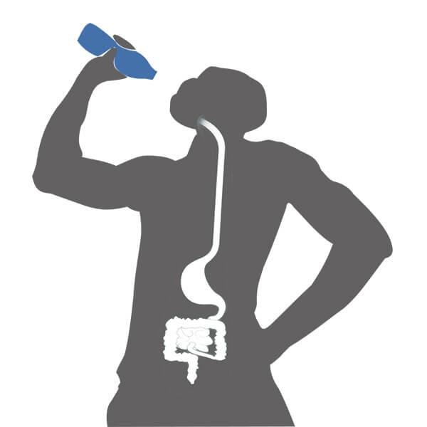 การดื่มน้ำมากๆดีต่อลำไส้ใหญ่และสุขภาพ