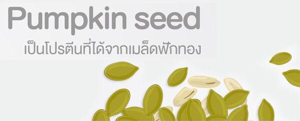 Pumpkin Seed เมล็ดฟักทอง