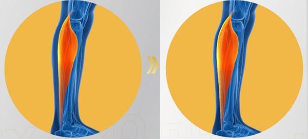 เสริมสร้างกล้ามเนื้อและกระดูก