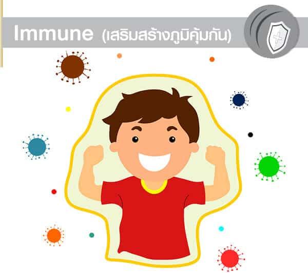 Immune เสริมสร้างภมูิคุ้มกัน